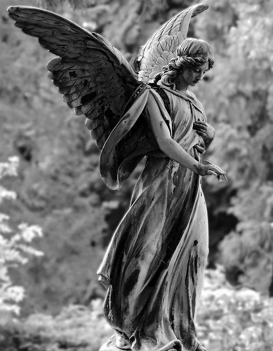 angel-24